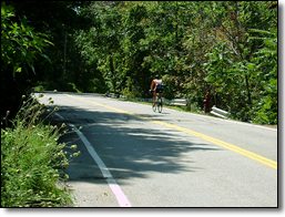 The road is already  an entryway to the Metroparks for cyclists.